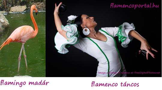 tévhit a flamencóról