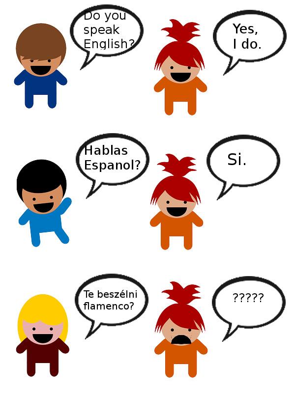 flamenco nyelv