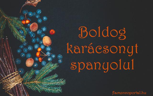 boldog karácsonyt spanyolul
