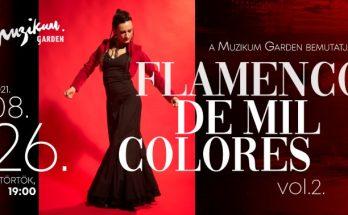 Flamenco de mil colores