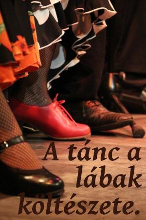 flamenco táncos idézet
