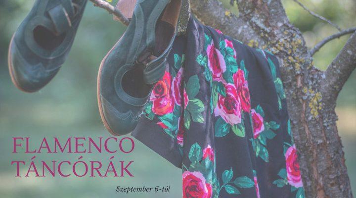 flamenco tanfolyam Bajnay Bea