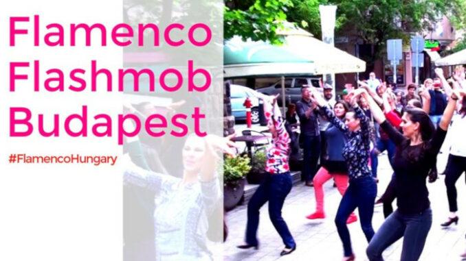 flamenco flashmob budapest