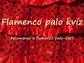 flamenco palo kvíz