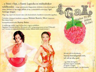 flamenco tábor 2019 igal