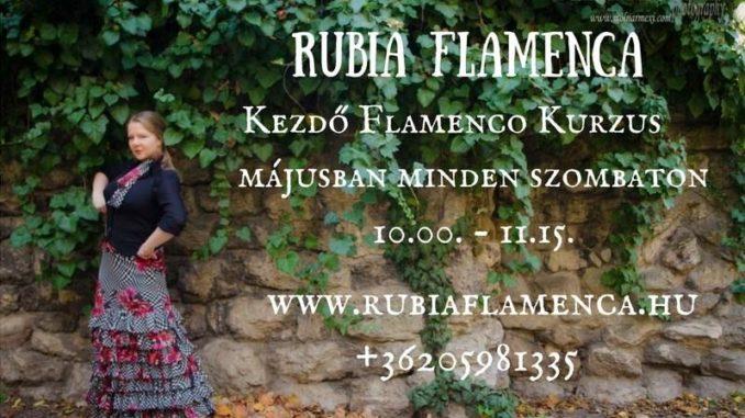 flamenco tanfolyam Bucsás Györgyivel 2018 május