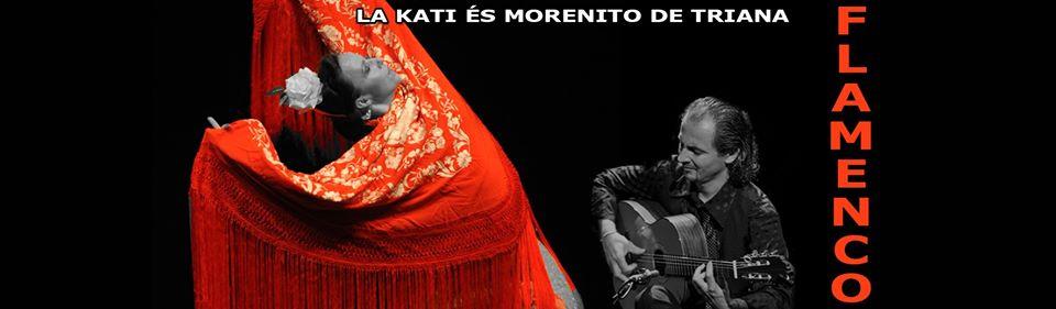 flamenco workshop, fiesta élő zenére