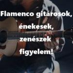 Flamenco gitárosok, énekesek, zenészek, figyelem!