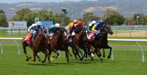horse-racing-358907_640