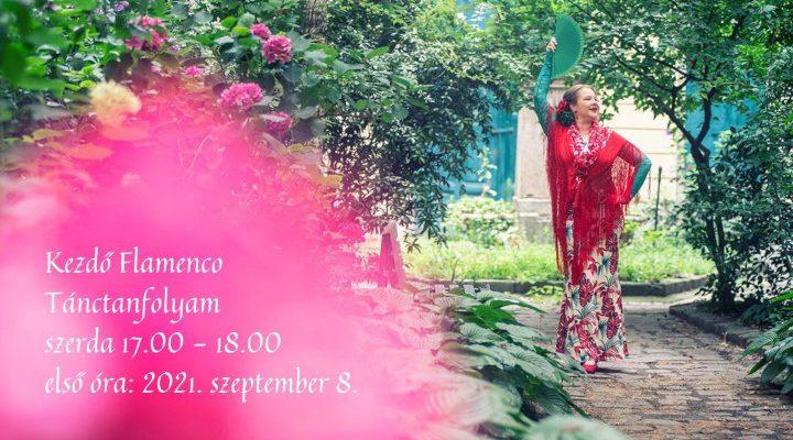 kezdő flamenco tanfolyam Bucsás Györgyi