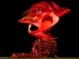 Pirók Zsófia flamenco táncos kendővel