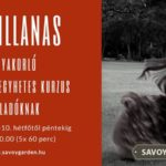 Sevillanas tanfolyam – aug. 6.