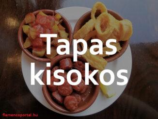 spanyol tapas kisokos