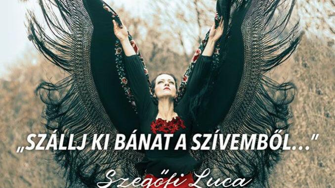 szállj ki bánat, flamenco előadás